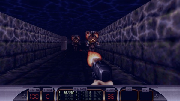 Duke Nukem 3D Steam Gift/RU CIS
