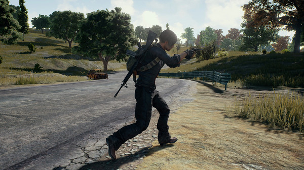 PLAYERUNKNOWN´S BATTLEGROUNDS (Steam | Russia Only)