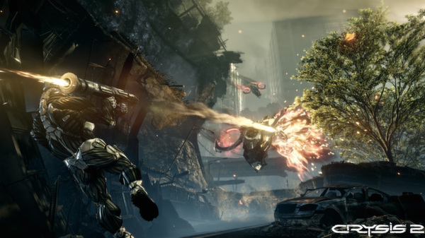 Crysis 2 Maximum Edition (Steam)