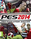 PRO EVOLUTION SOCCER 2014 / STEAM / REG.FREE / MULTIL
