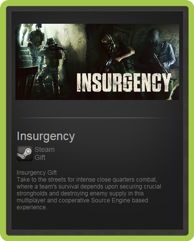 Insurgency (RU/CIS) - steam gift + ПОДАРОК
