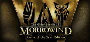 TES III: Morrowind GOTY(Steam Gift/Region Free)