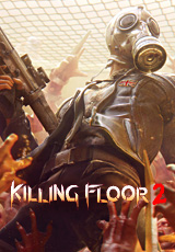 Killing Floor 2 (activation key in Steam)