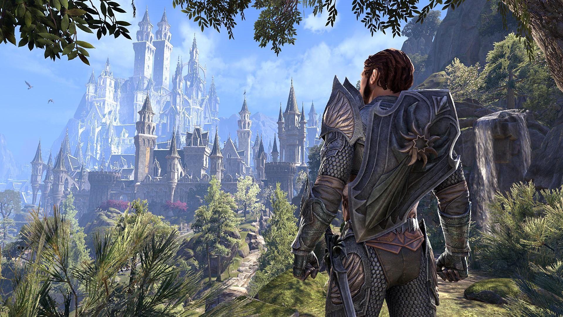 The Elder Scrolls Online: Collection Elsweyr (Steam RU)