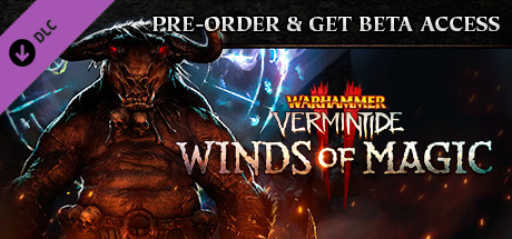 Warhammer: Vermintide 2 - Winds of Magic DLC (Steam RU)