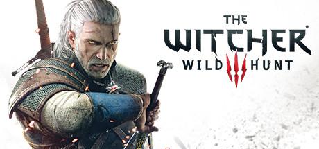 the witcher 3: wild hunt (steam gift rossiya) 1079 rur