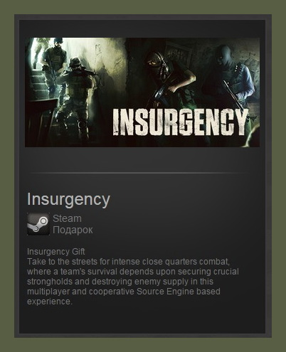 Insurgency (Steam Gift ROW / Region Free)
