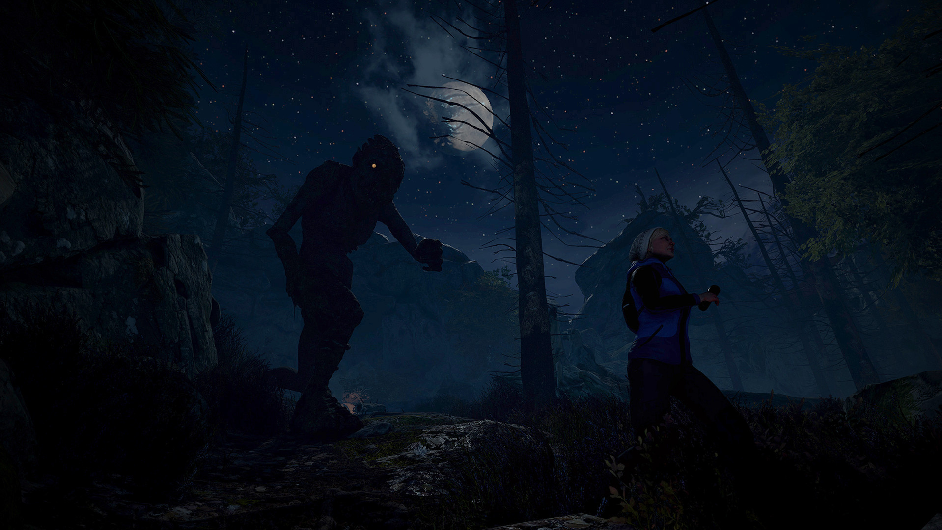 Through the Woods (Steam Key) 2019
