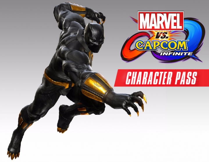 MARVEL VS CAPCOM INFINITE Character Pass (steam) -- RU