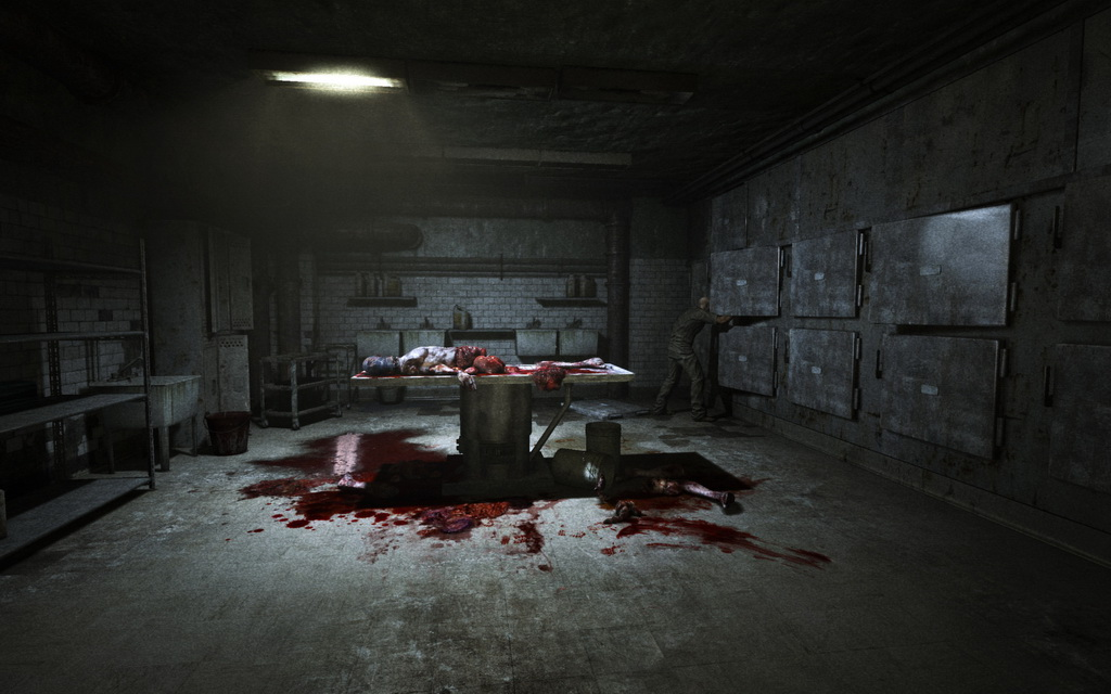 Outlast (Steam Gift / RU / CIS)