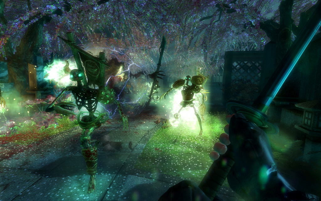 Shadow Warrior: Special Edition (Steam Gift / RU / CIS)