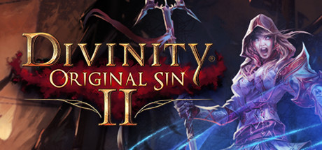 Divinity: Original Sin II 2 (Steam Offline)
