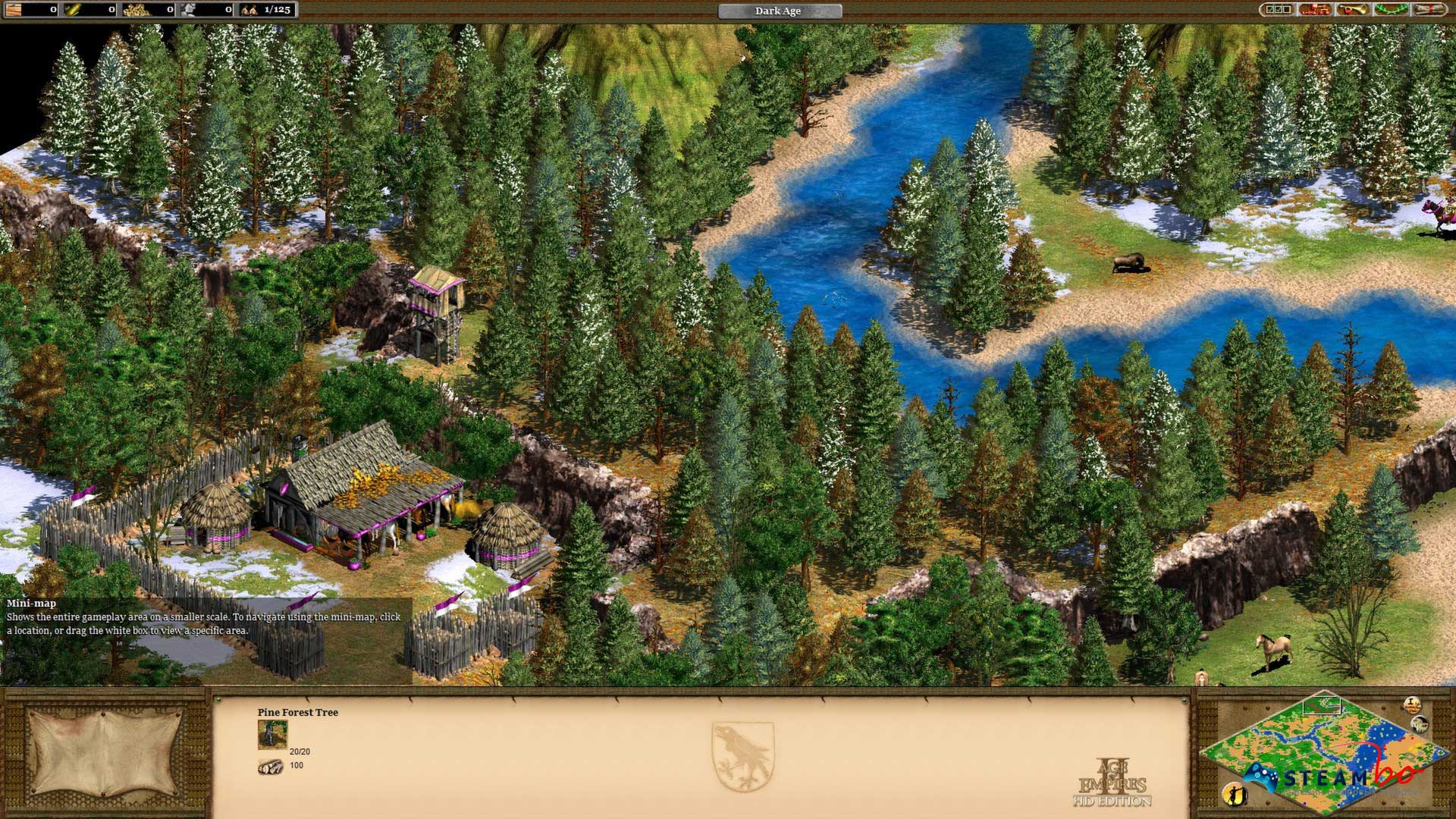 Age of Empires II HD RU/CIS (Steam Gift/Key)