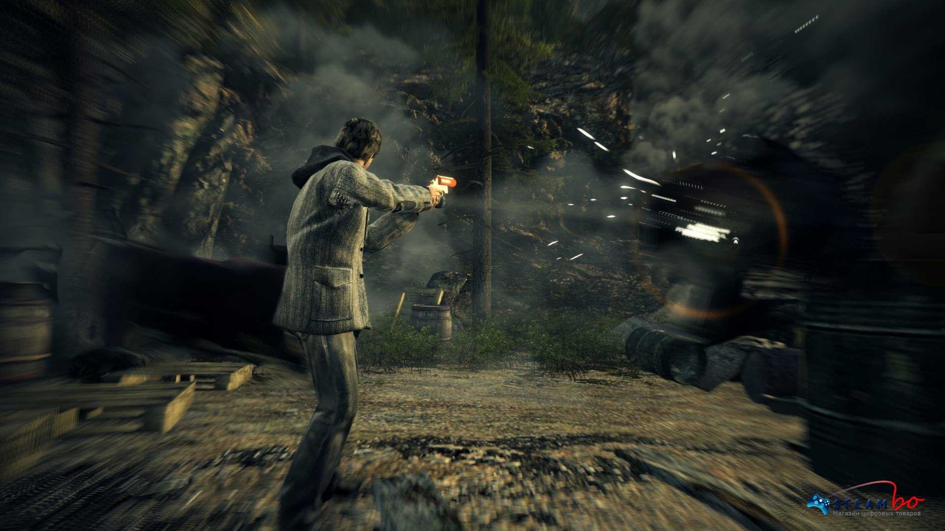 Alan Wake Region Free (Steam Gift / Key)