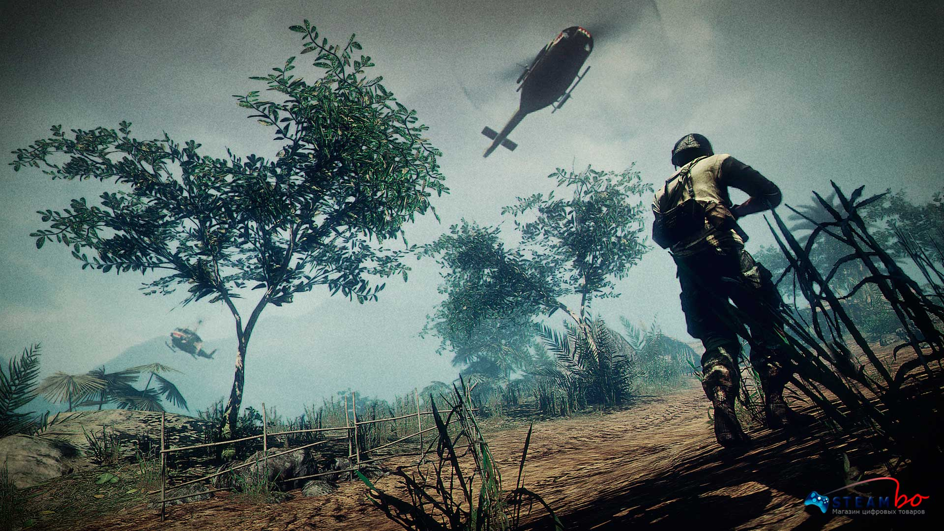 Battlefield: Bad Company 2 Vietnam ROW (Steam GIft / Key)