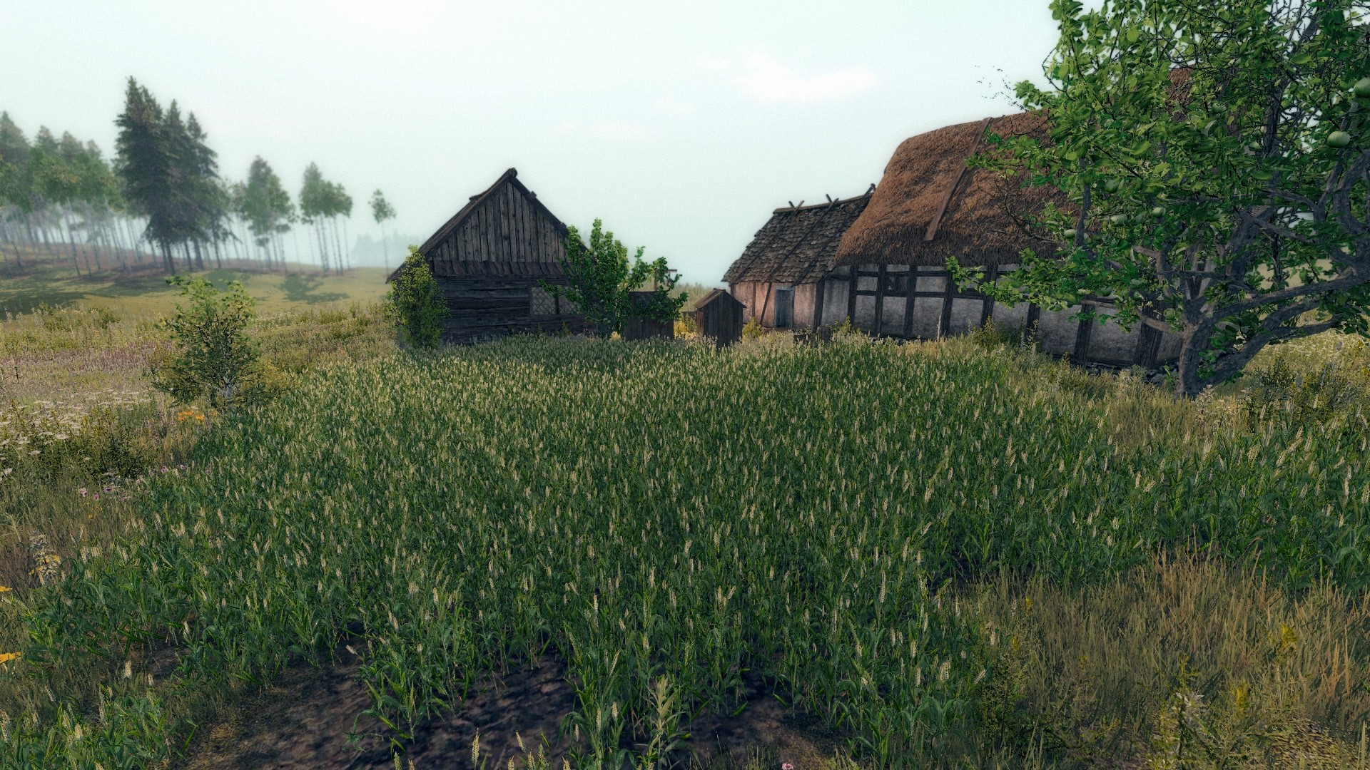 Life is Feudal: Your Own (Steam Gift Region Free / ROW)