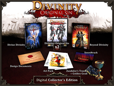 Divinity Original Sin Digital Collectors(Steam account)