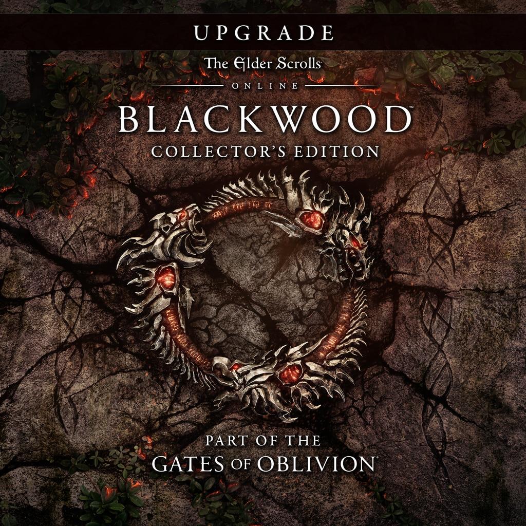 TESO Blackwood Collectors Edition Upgade (Steam) RU/CIS