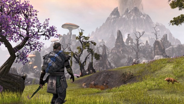 THE ELDER SCROLLS ONLINE TAMRIEL UNLIMITED | REG. FREE