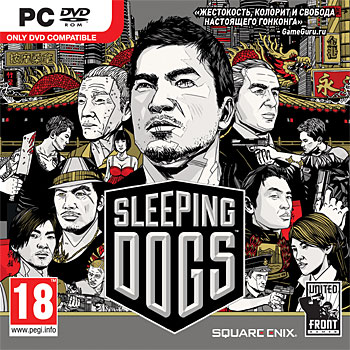 Sleeping Dogs (Steam | Photo) RU - CIS + Discounts