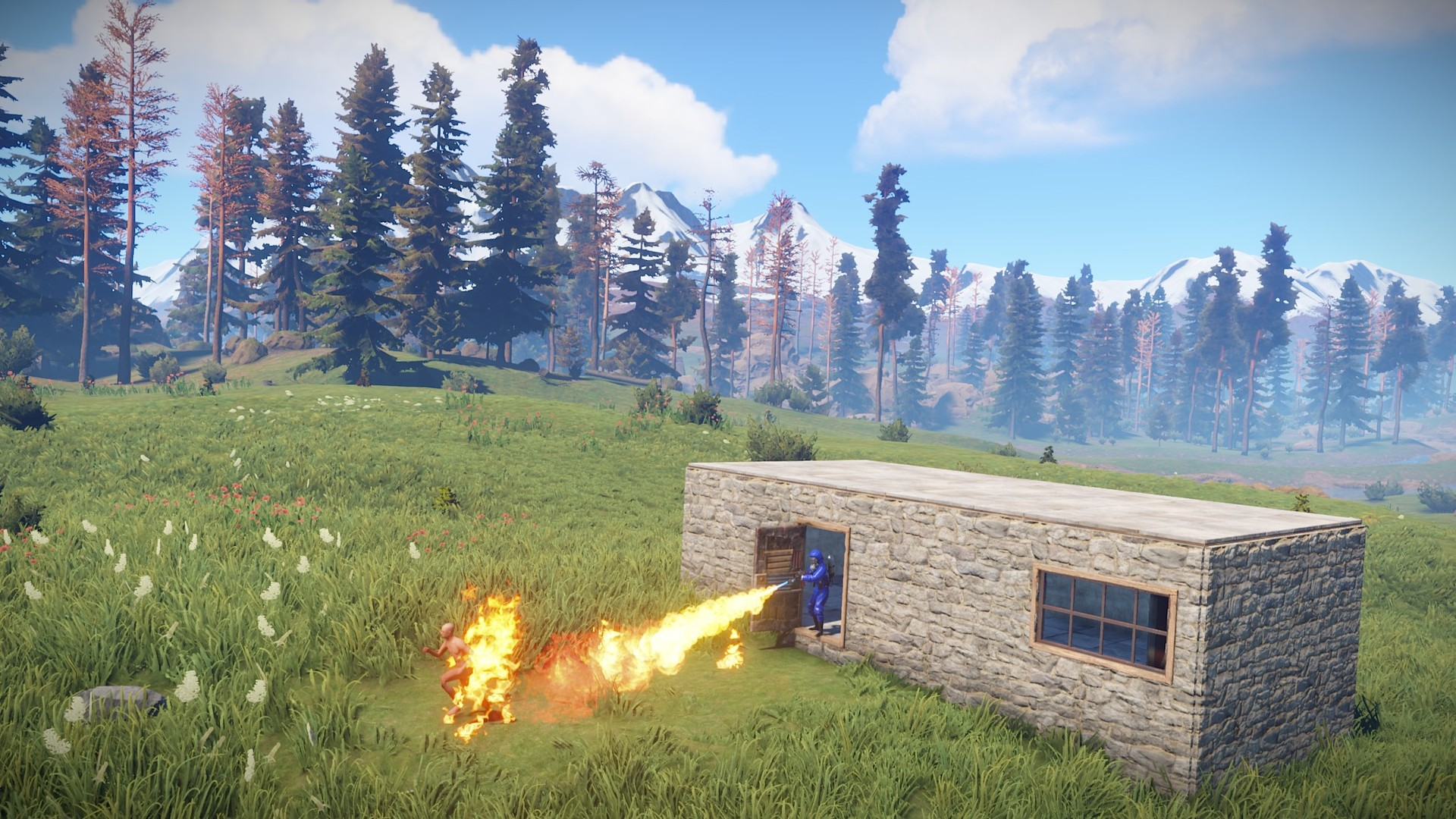Rust (Steam Gift / RU + CIS)