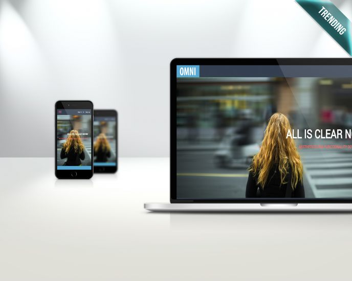 Omni Blue - Responsive theme with Index page Slideshow