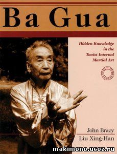 Bagua - the mystical martial art