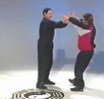 Bagua For Streetfighting