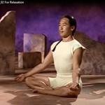 Видеофильм Практика йоги для релакасации