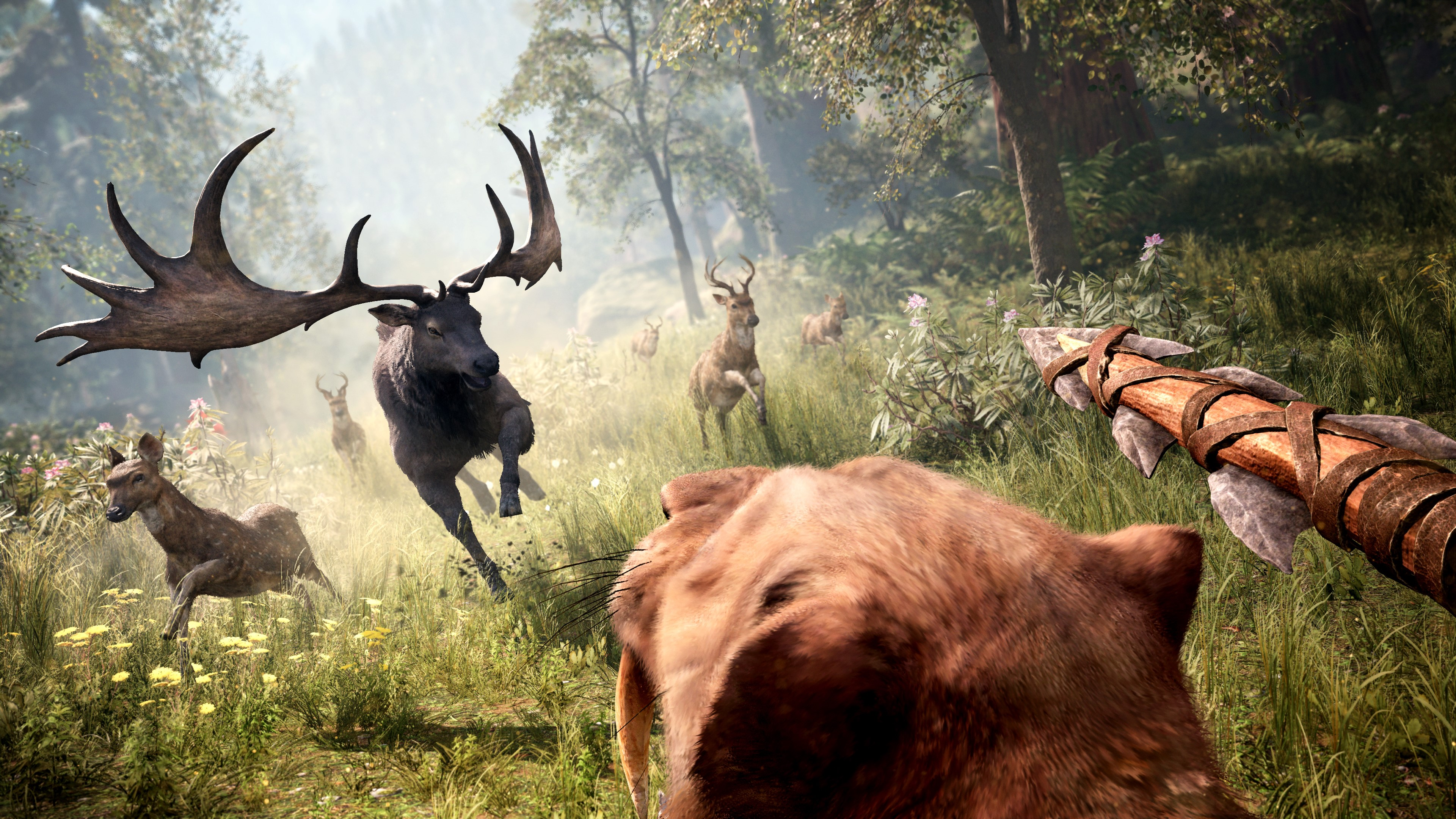 Far Cry Primal (Steam Gift / ROW)