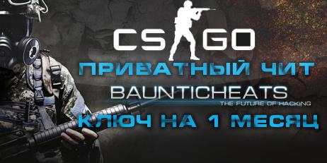 Купить SteelHook for CS:GO (1 месяц) Чит - ключ на 1 месяц