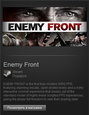 Enemy Front (Steam Gift / ROW)