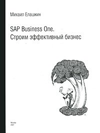 SAP Business One. Building an effective business