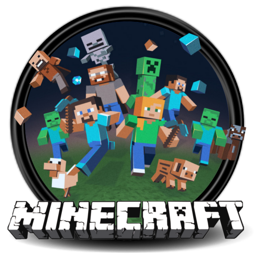 Minecraft account (premium, access to the launcher)