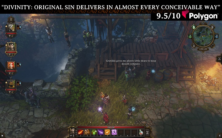 Divinity Original Sin (Steam Gift) Region Free