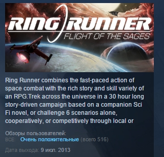 Ring Runner: Flight of the Sages ( STEAM GIFT RU + CIS)