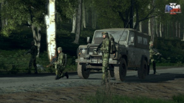Arma 2 Army of the Czech Republic STEAM KEY REGION FREE