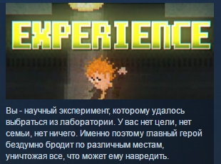 EXPERIENCE ( Steam Key / Region Free ) GLOBAL ROW