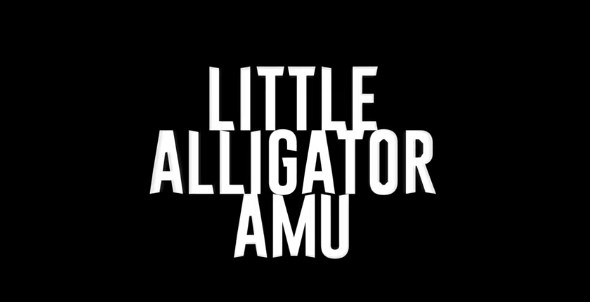 Little ALLIGATOR ( Steam Key / Region Free ) GLOBAL ROW