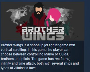Brother Wings STEAM KEY REGION FREE GLOBAL