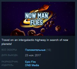 Now Man Flies STEAM KEY REGION FREE GLOBAL