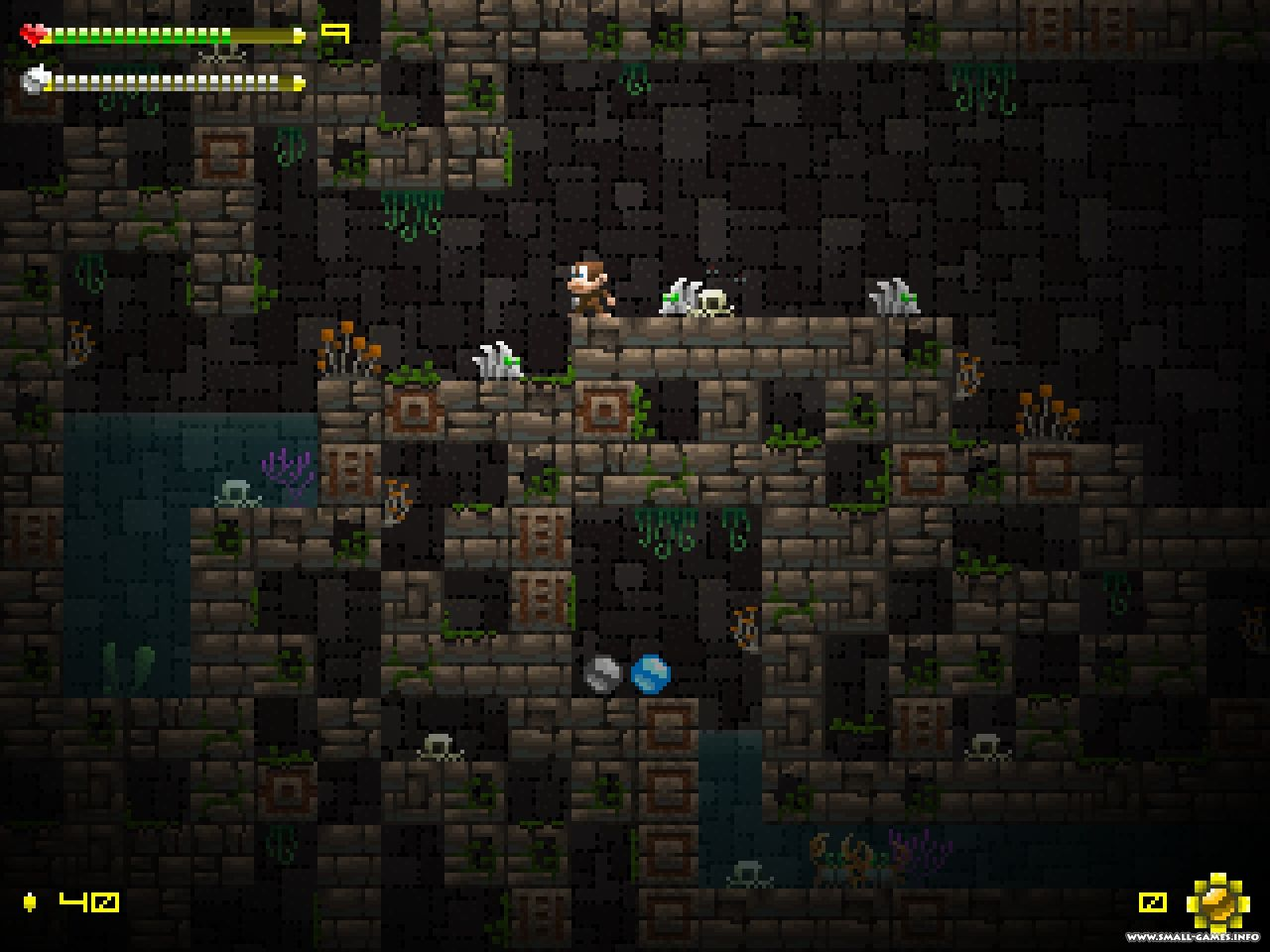 Adventure Apes and the Mayan Mystery ( Desura Key ROW )