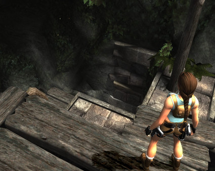 Tomb Raider: Anniversary ( Steam Key / Region Free )