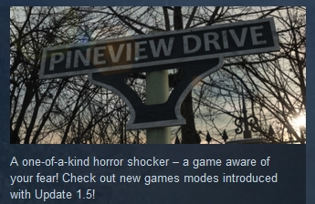 Pineview Drive ( Steam Key / Region Free ) GLOBAL ROW