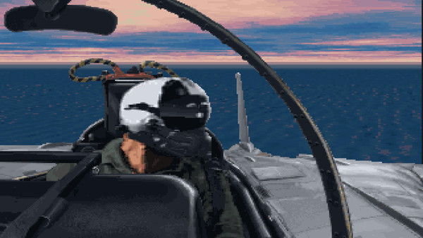 Fleet Defender The F-14 Tomcat Simulation STEAM KEY ROW