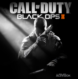 Call of Duty Black Ops 2 (Скан Steam ключа)