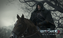 The Witcher 3 Wild Hunt Steam Gift + Region ru
