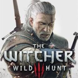 Фотография the witcher 3: wild hunt - игра года + подарок