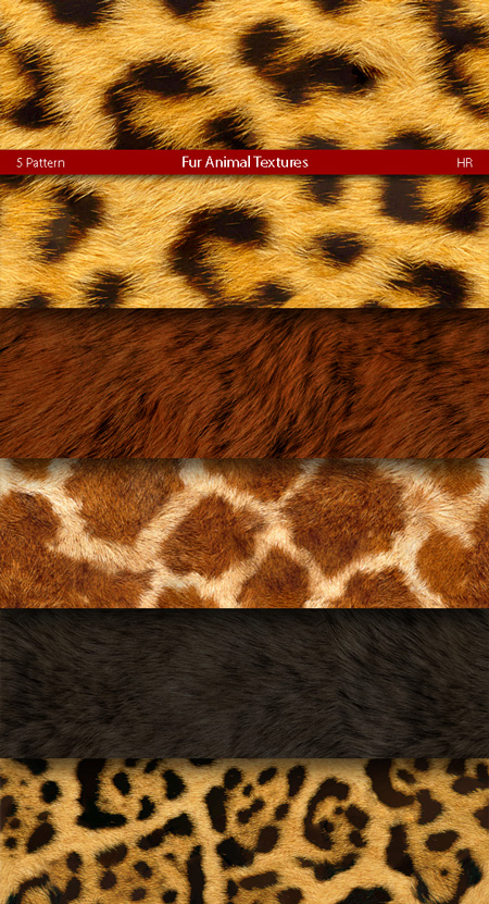 Fur Animal Patterns