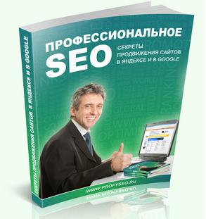 Professional SEO: Secrets of promotion of sites
